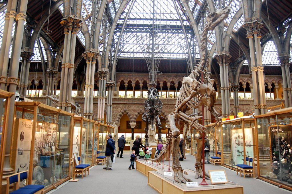 Oxford Museum of Natural History - Magnus D via Flickr