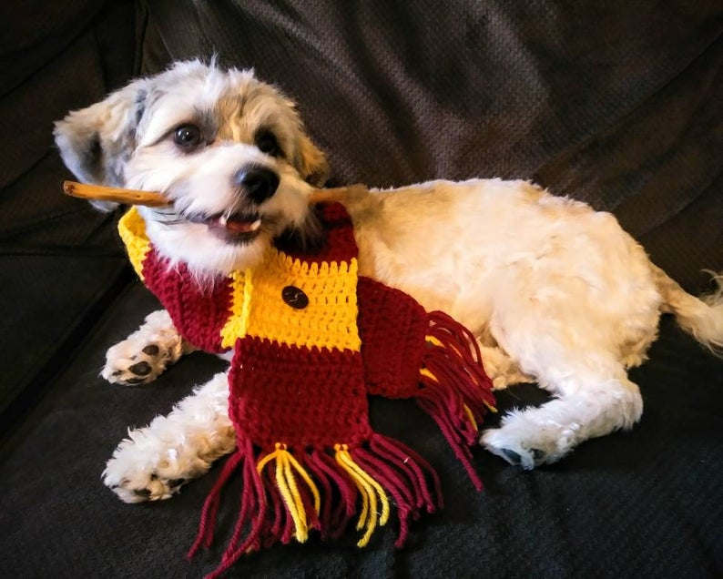 Harry Potter Pet Gifts